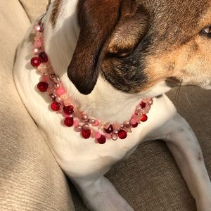Jewelry - Necklace, not the pup